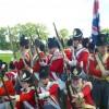 Hoogstraten Bicentenary: Troop Report.